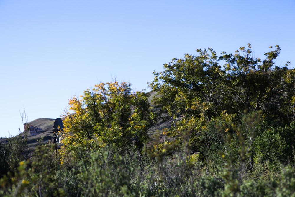 Sam Nail Ranch, Big bend Nal Park
